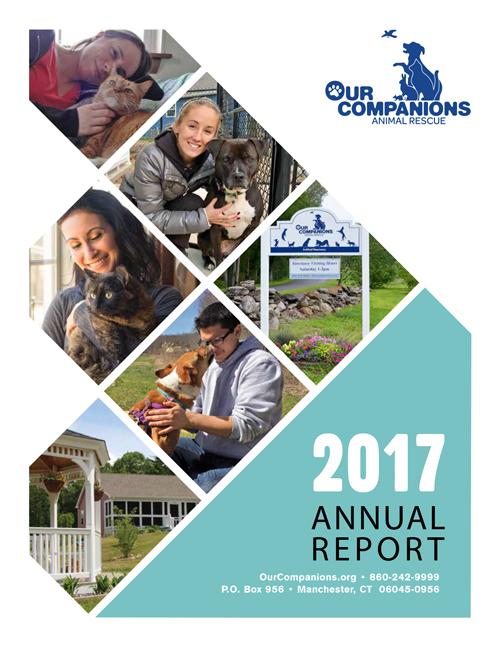 Annual-Report_2017-1